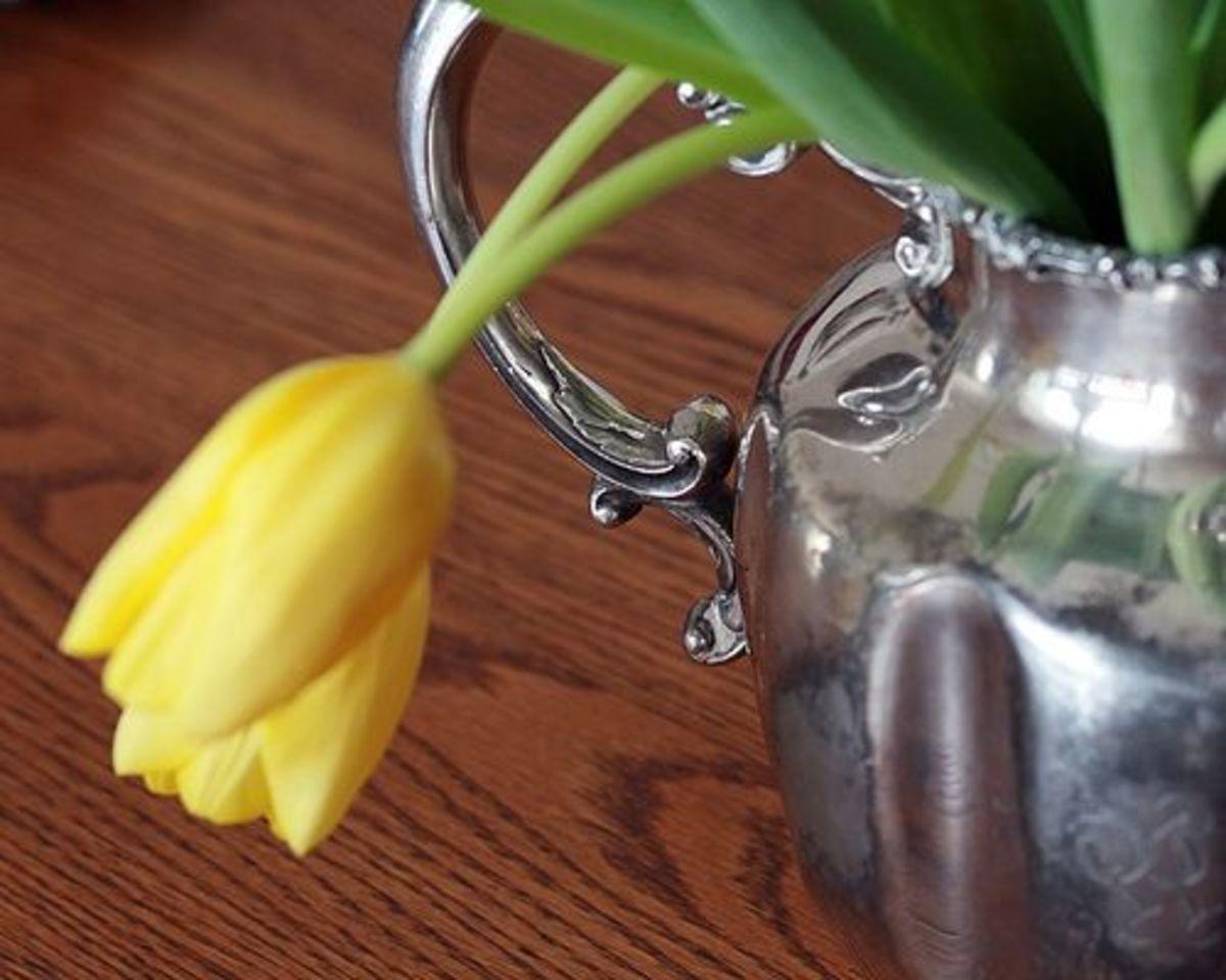 pitcher-flowers-ccflcr-summerbl4ck