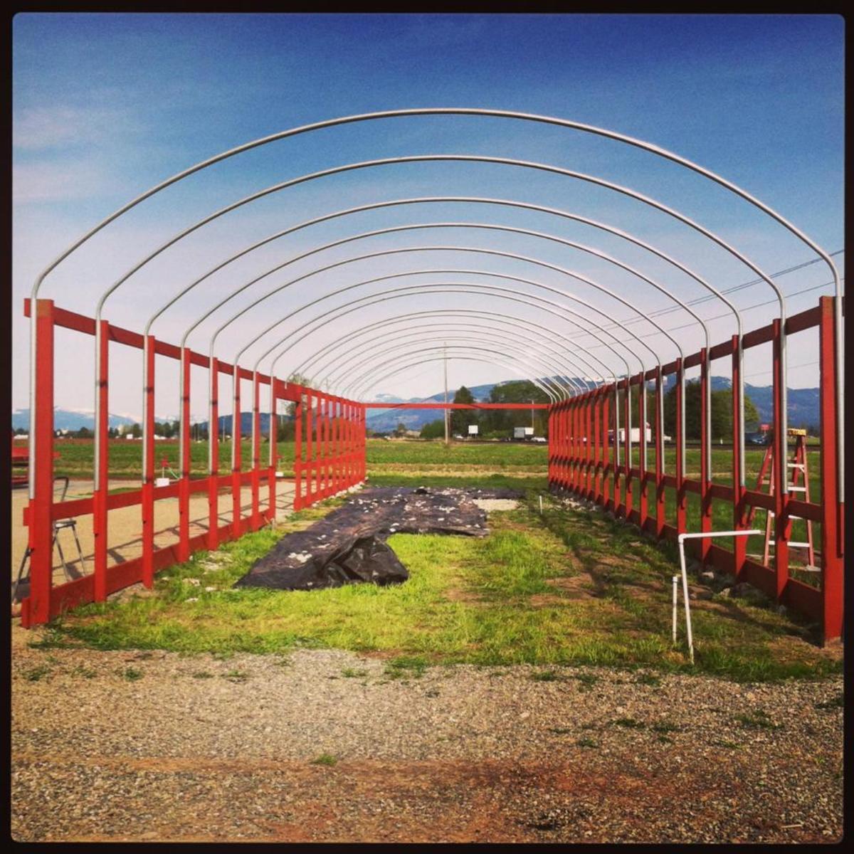 Viva Farms helps farmers get their start.