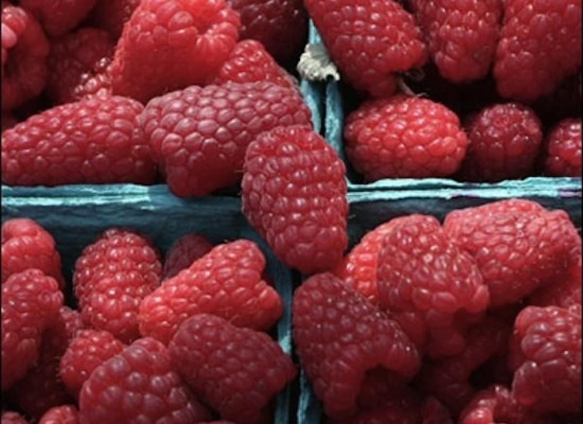 raspberries-ccflcr-La-Grande-Farmers-Market