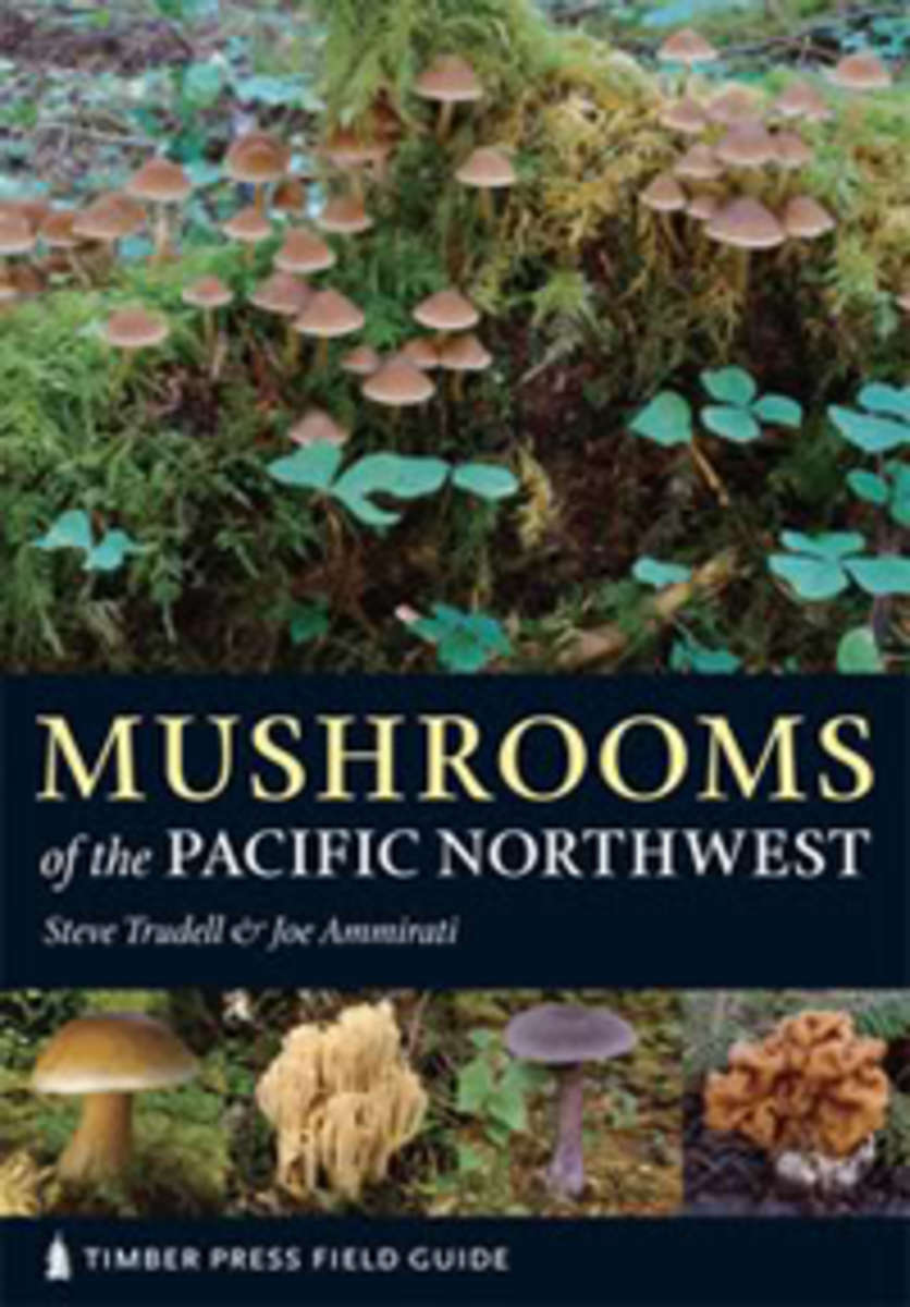 mushroomspnw1