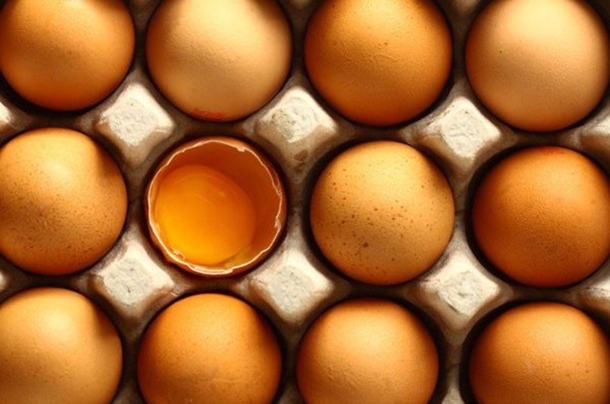 nestfresh non-gmo project certified dried eggs