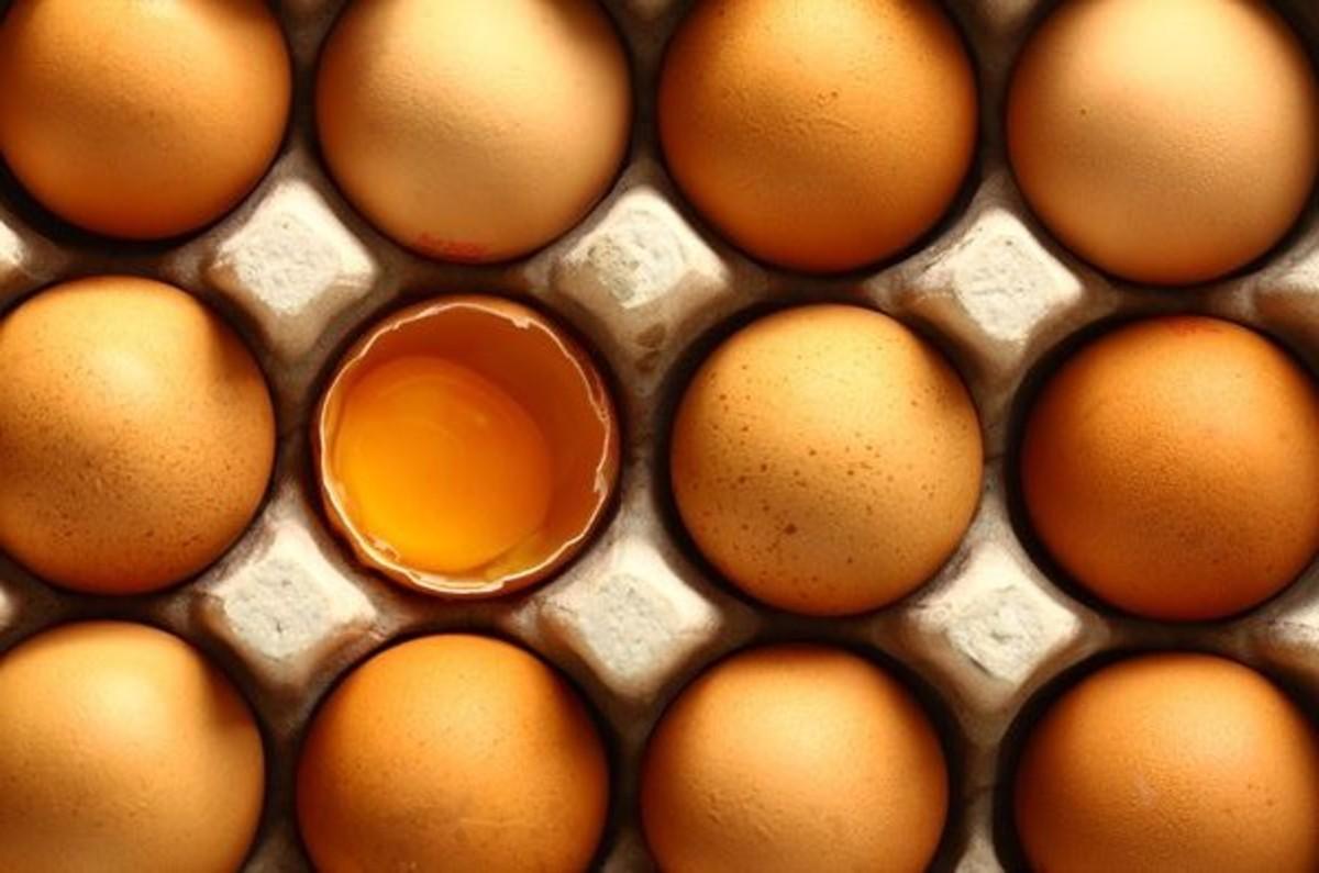 nestfresh non-gmo project certified dried eggs