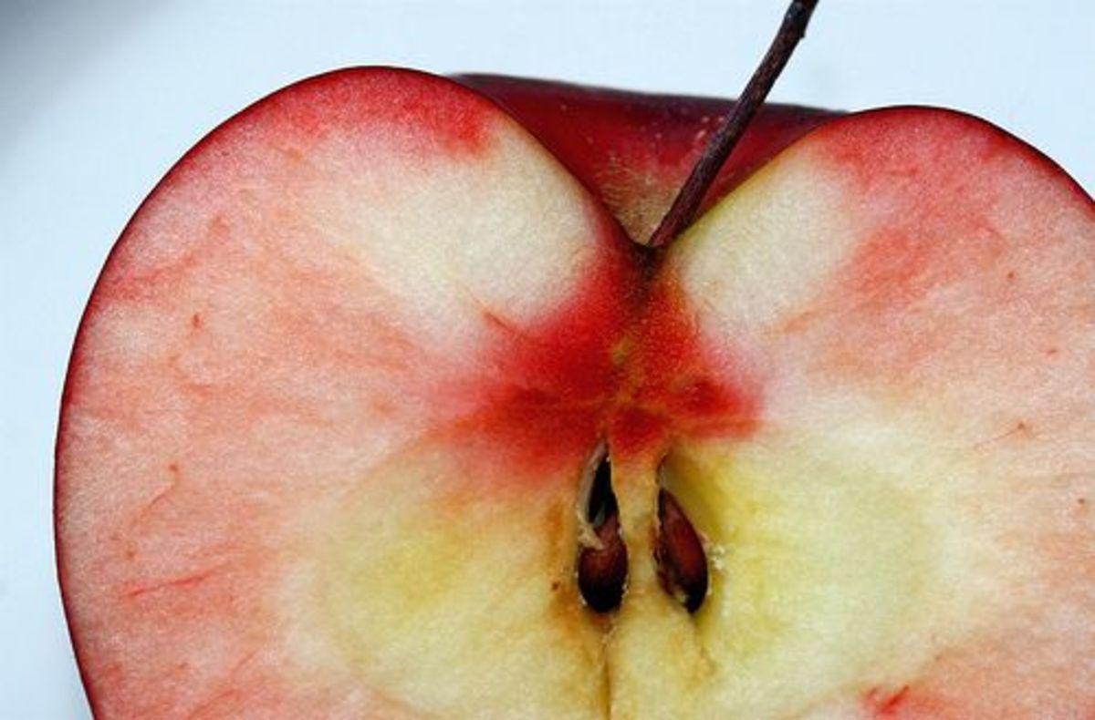 apples-ccflcr-muffet