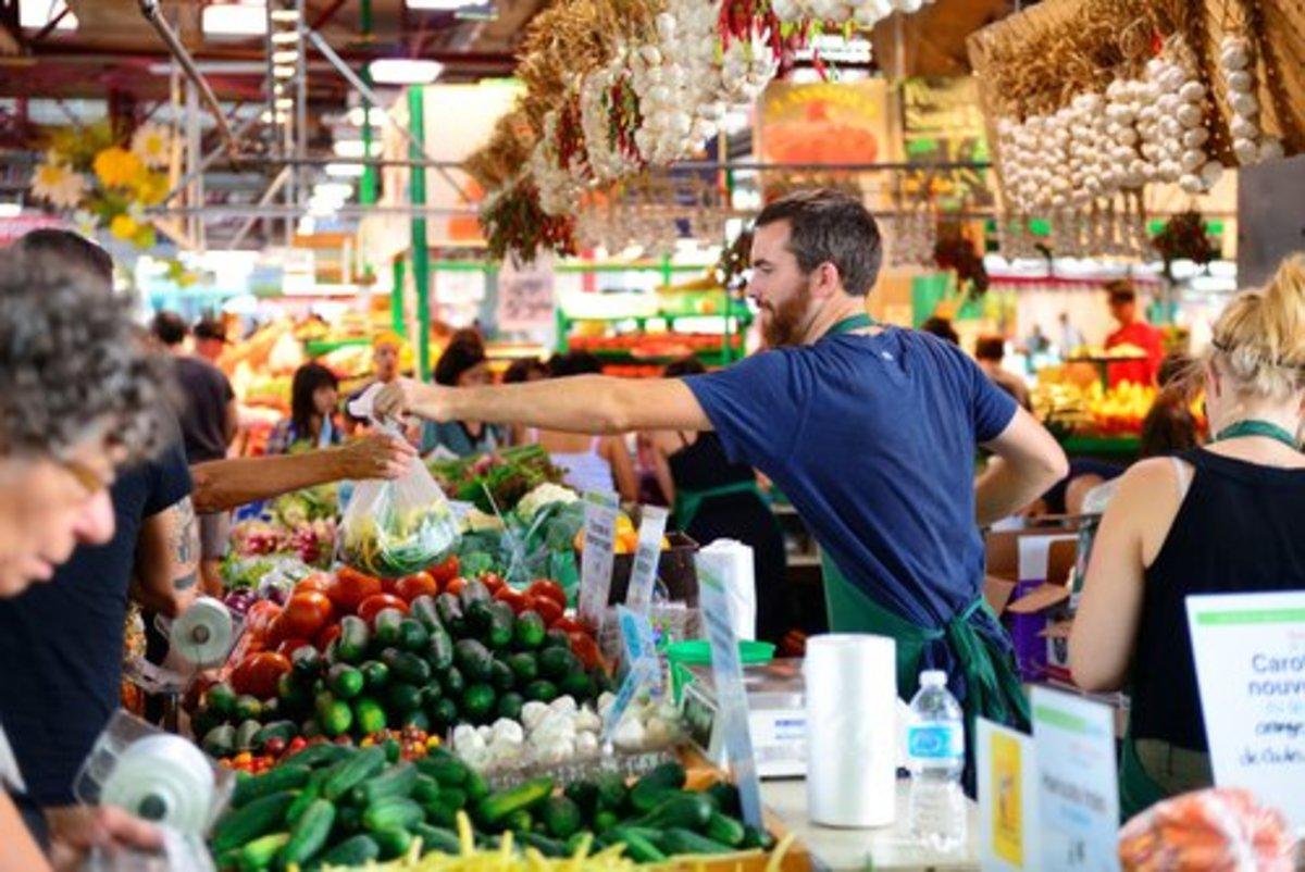 urban farming brings young farmers into field