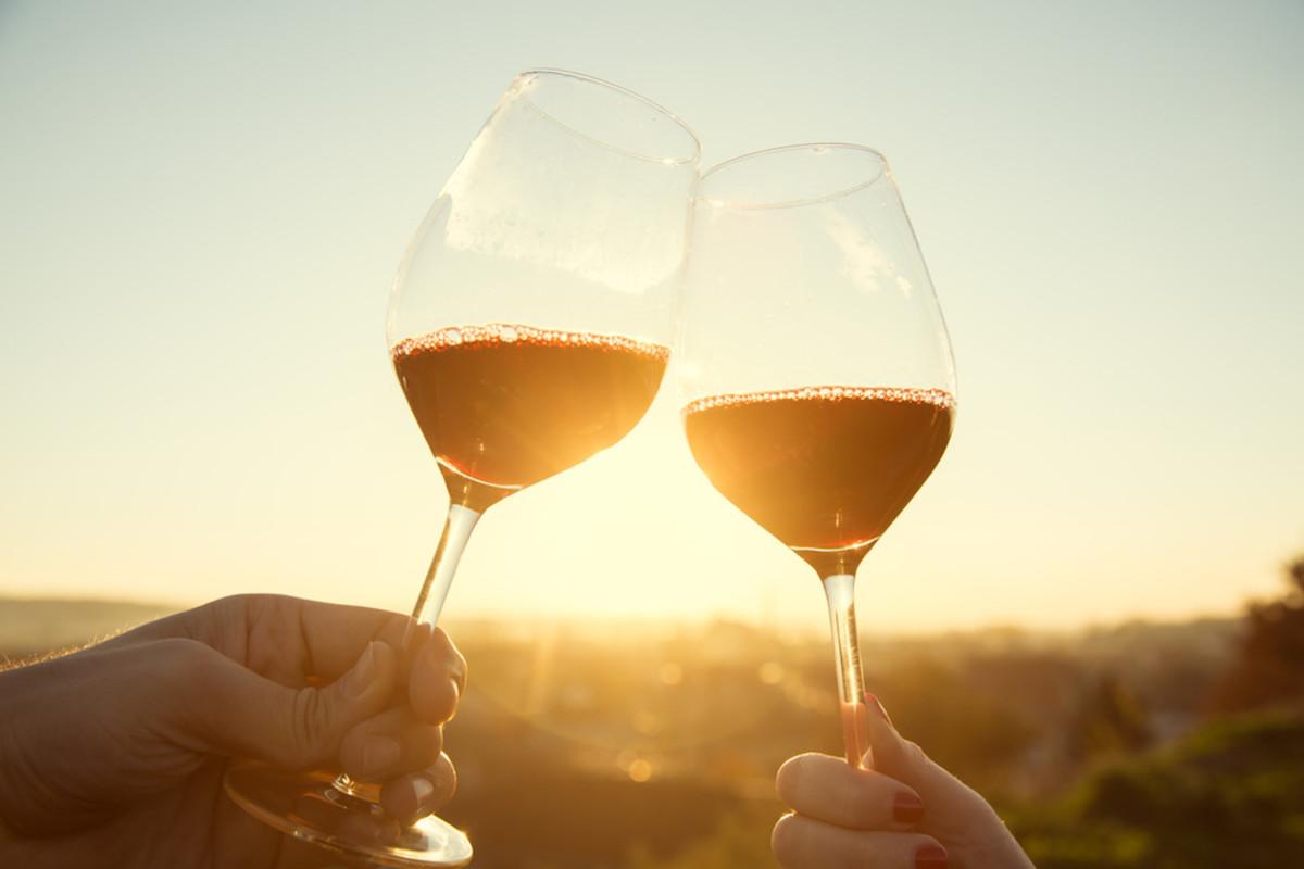 Best list of organic wine