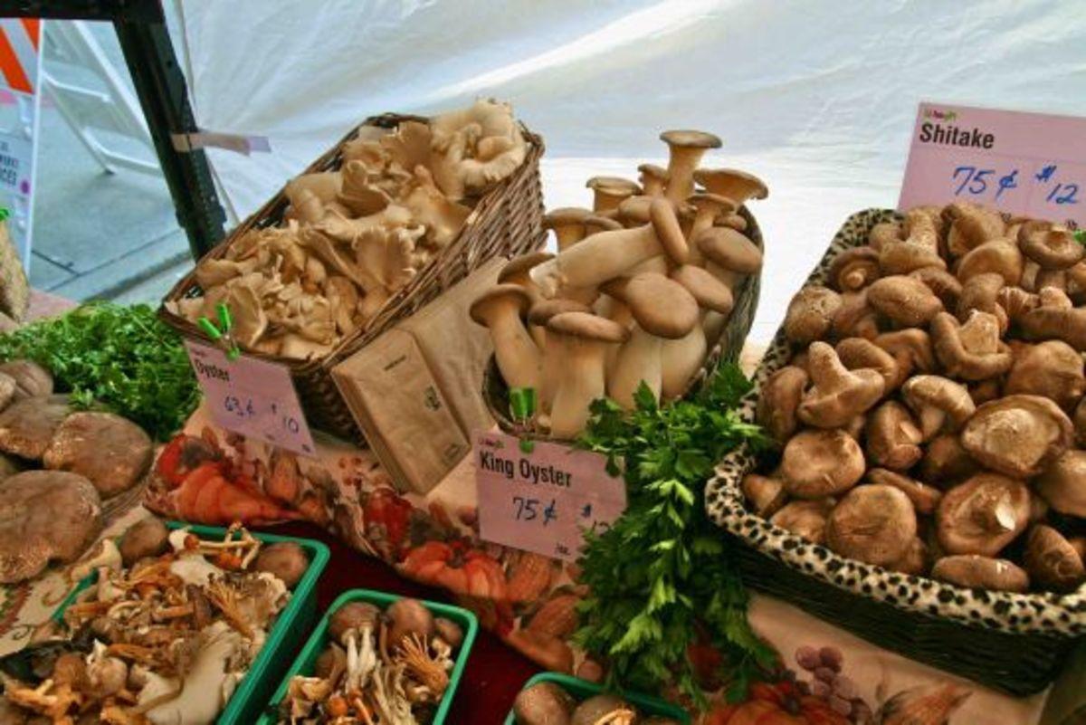 mushrooms-jillslibrary-jillettinger