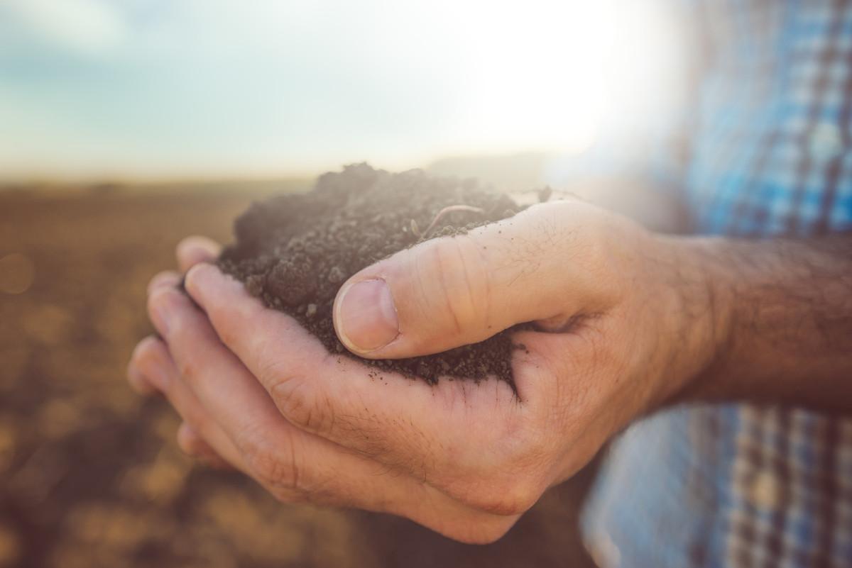 USDA Receives 5,000 Letters Demanding Organic Program Overhaul