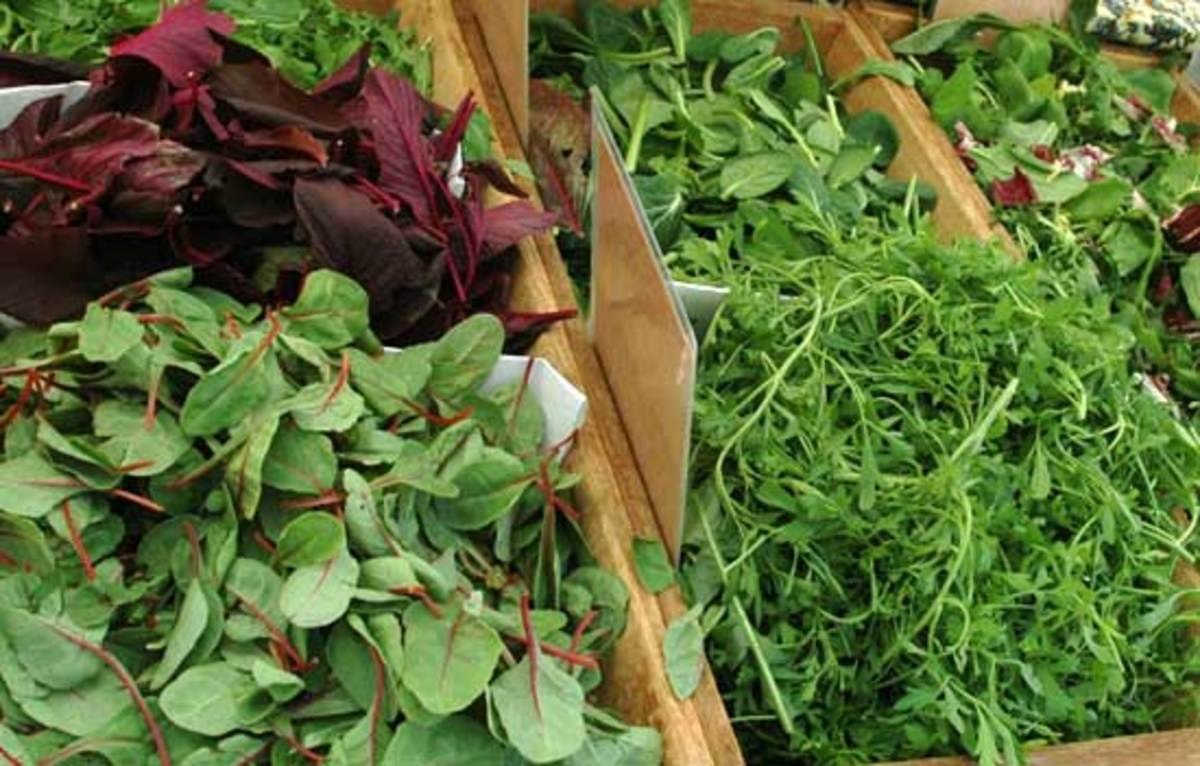 111 Herbs Vegetables Edible Flowers Fruit to Plant in Your