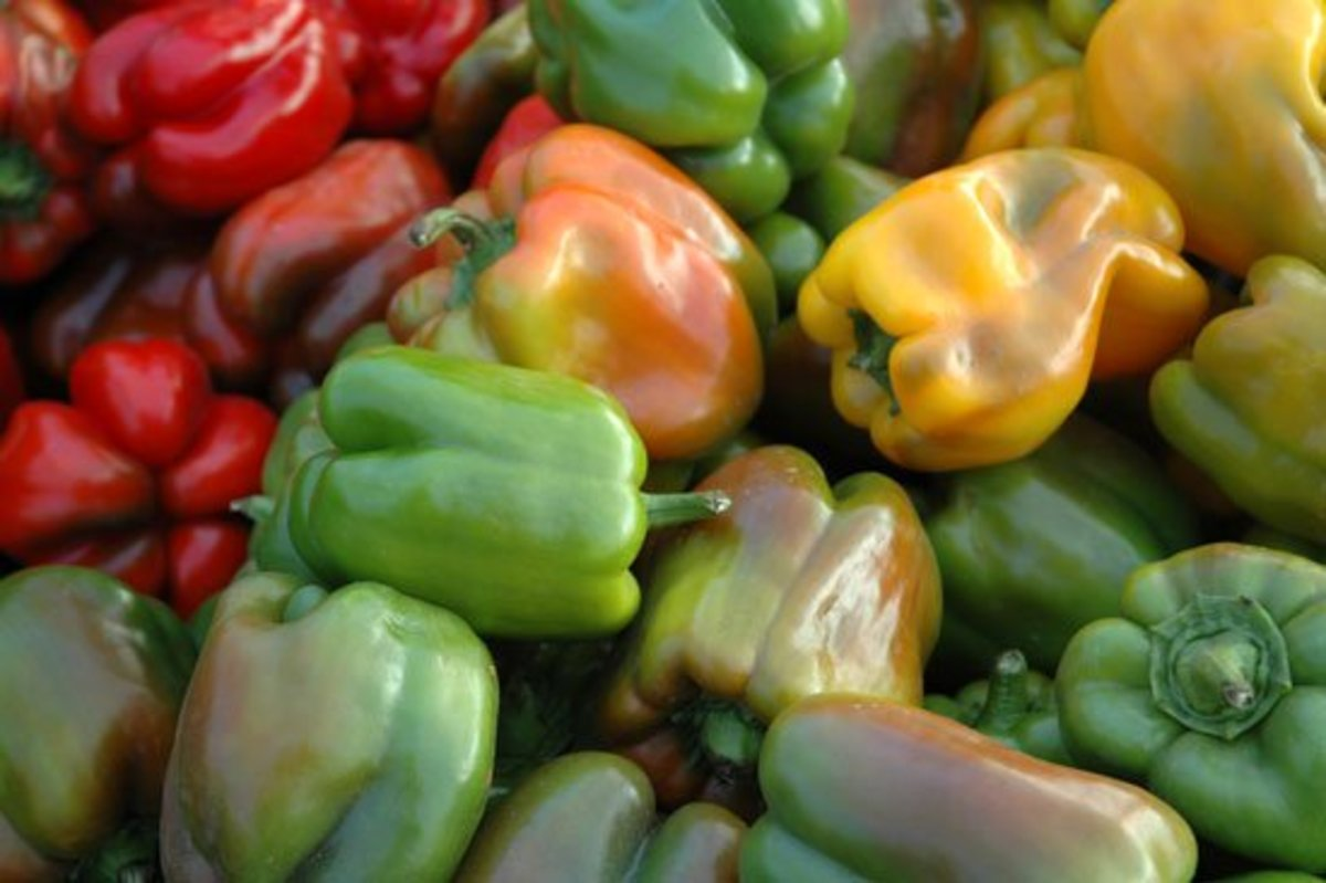 organic-bell-peppers