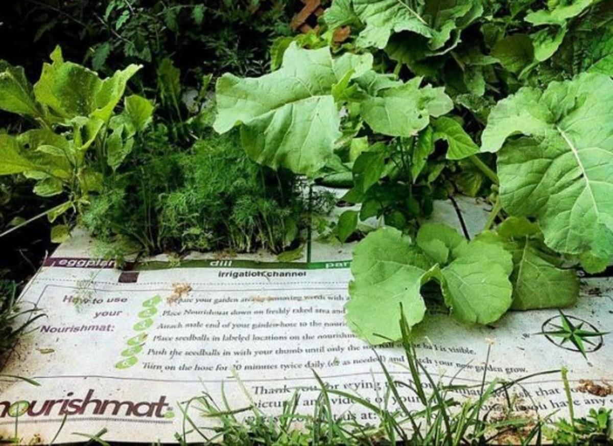 Organic gardening, tools
