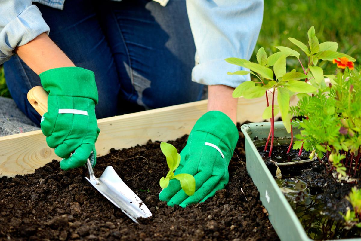 11 Organic Gardening Ideas to Make DIY Gardening a Snap