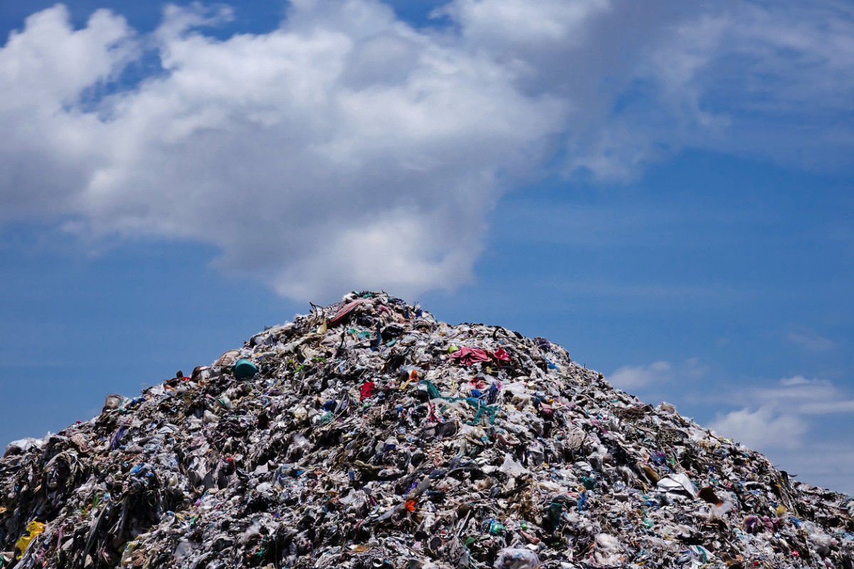 Humans Have Made 'One-Billion Elephants Worth' of Plastic, and (So Much) More is Coming