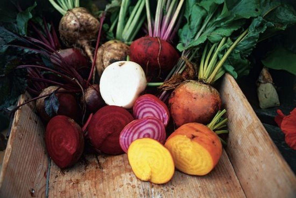 root-veggies-ccflcr-skanska