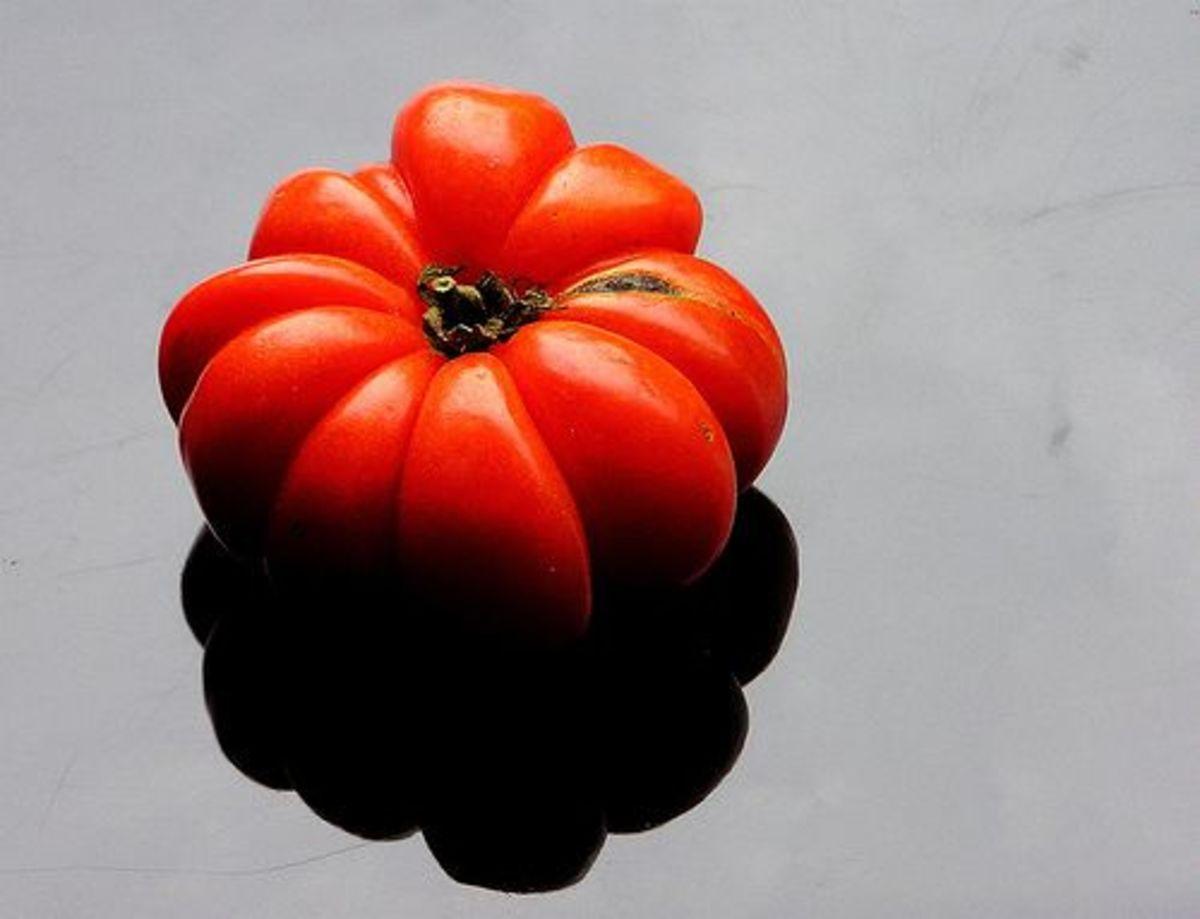 tomatoes-ccflcr-muffet