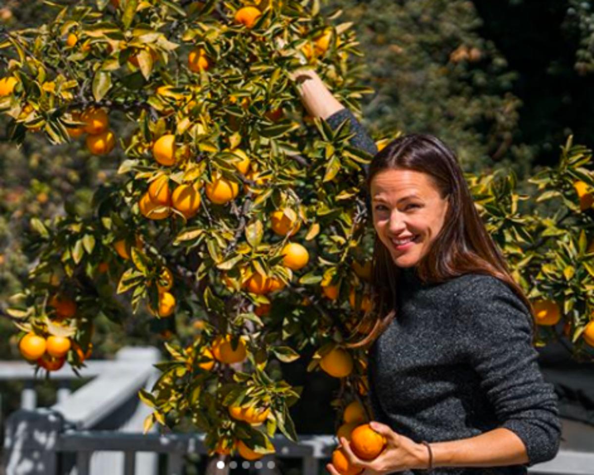 How Jennifer Garner Encourages Her Kids to Choose Veggies Over Junk Food