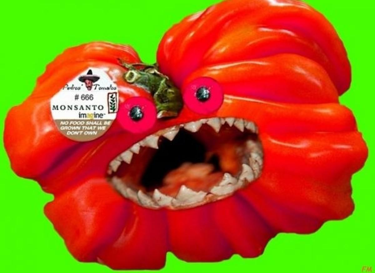 scary-GMO-tomato-ccfl
