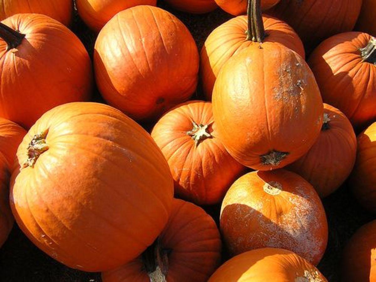 Pumpkinsbowling-ccflcr-DrBacchus