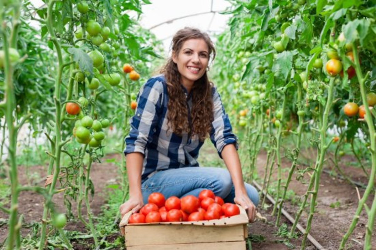 So You Want to Be a Farmer: Consider a Farm Apprenticeship