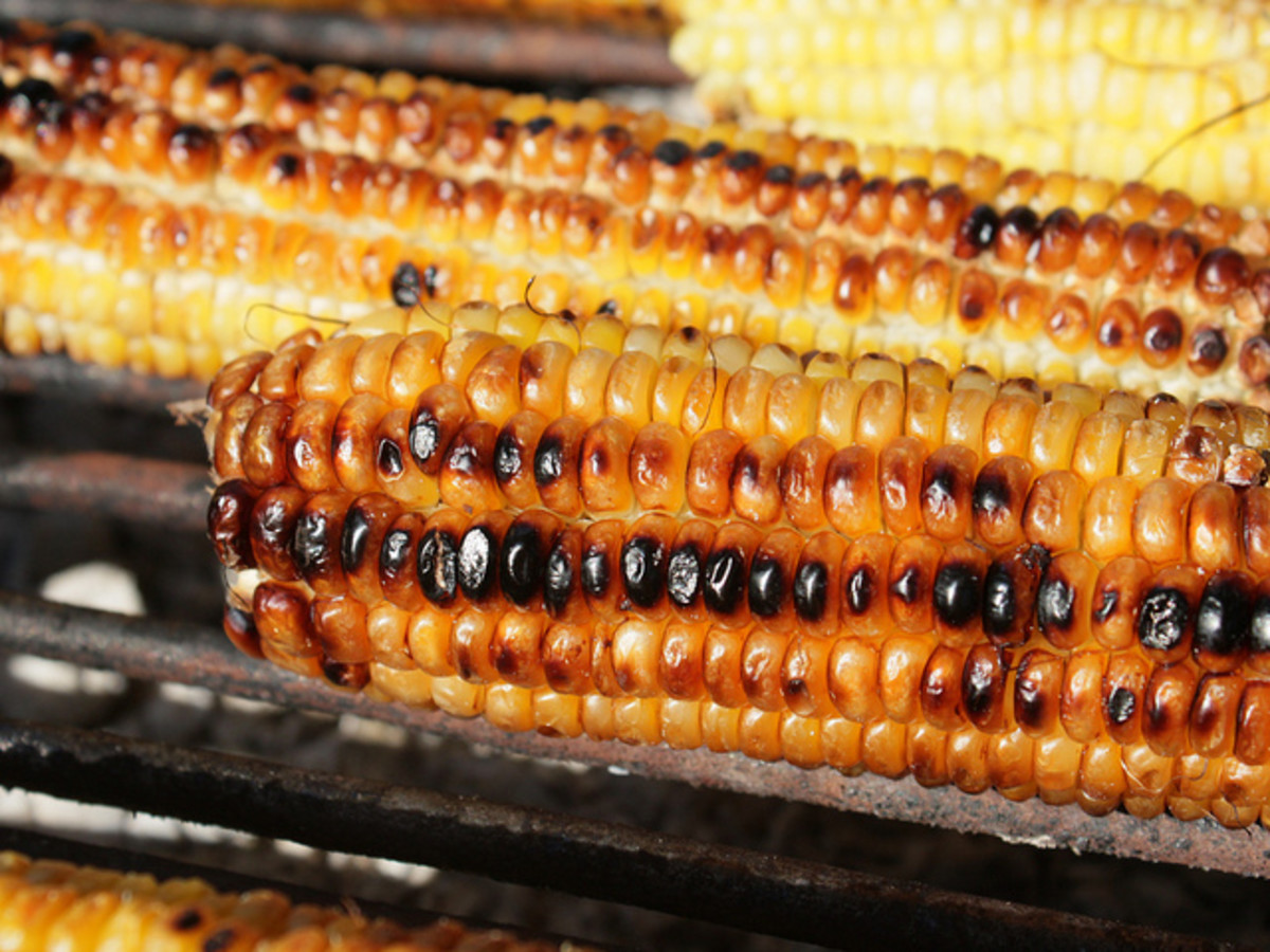Grilling recipes, sweet corn