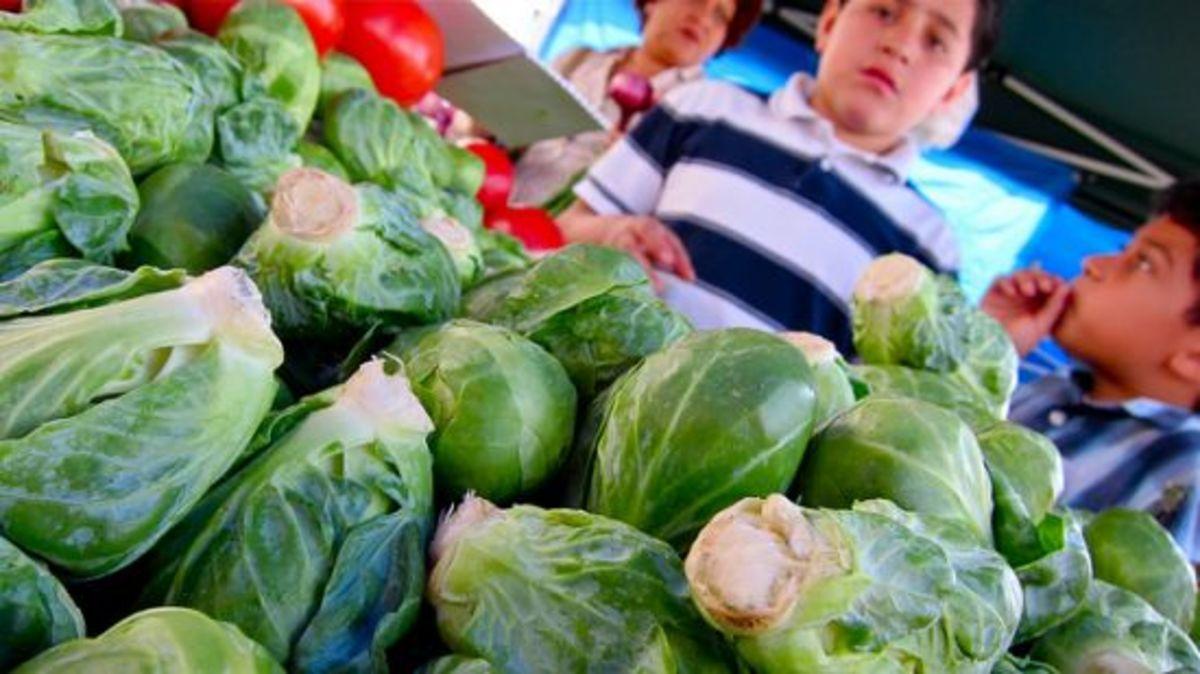 brusselssprouts-ccflcr-djjewelz1