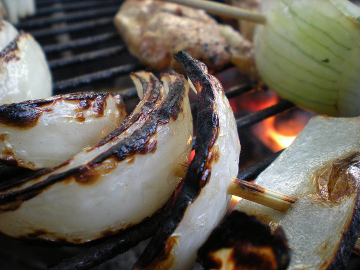 Grilling recipes, beef and onions