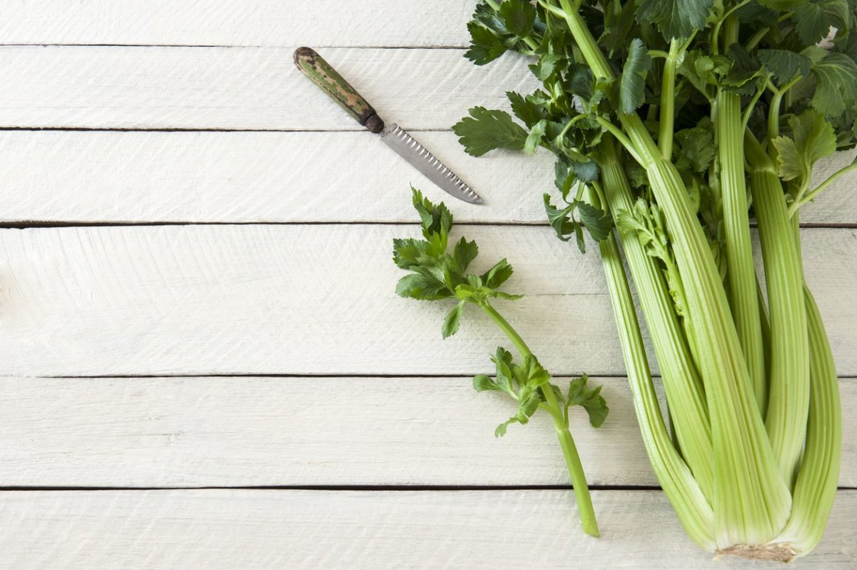 The Crazy Hidden Benefits of Celery Juice and a Killer Recipe You'll Love