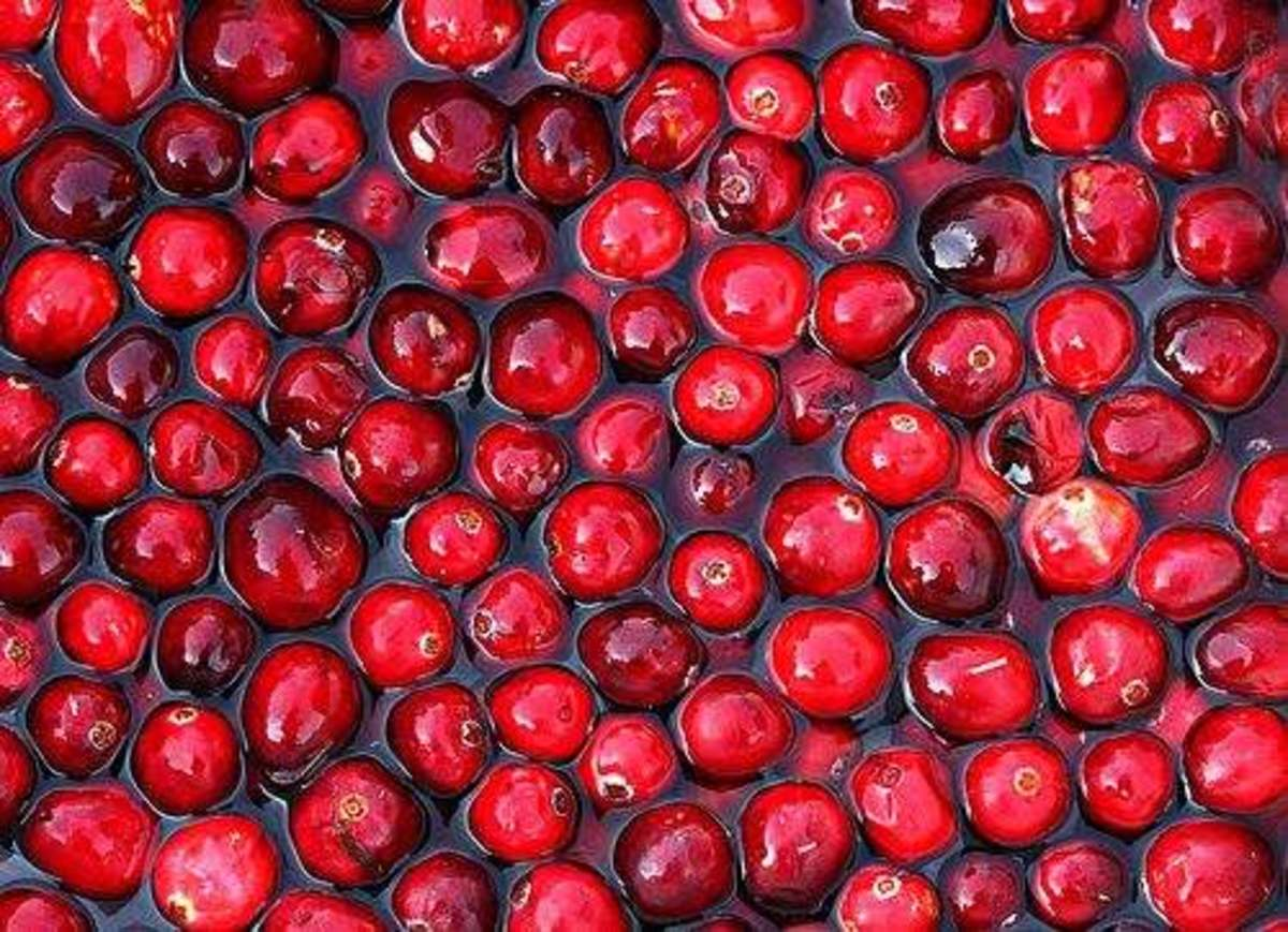 cranberries-ccflcr-muffet
