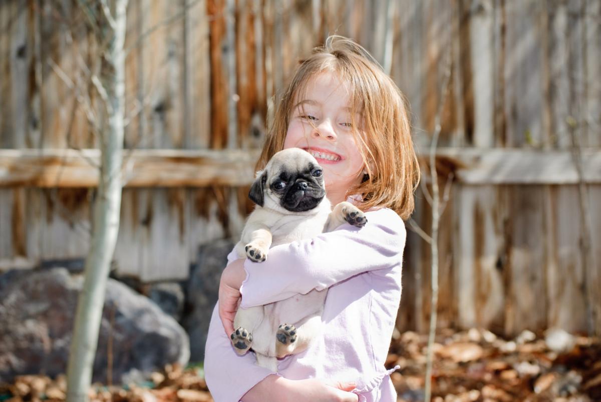 child and kid photo