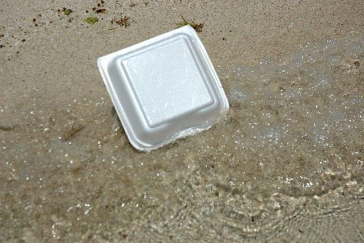 California First State to Ban Styrofoam Packaging