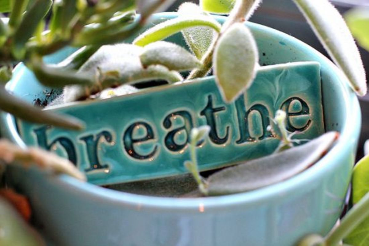 breathe-ccflcr-maechevretteart