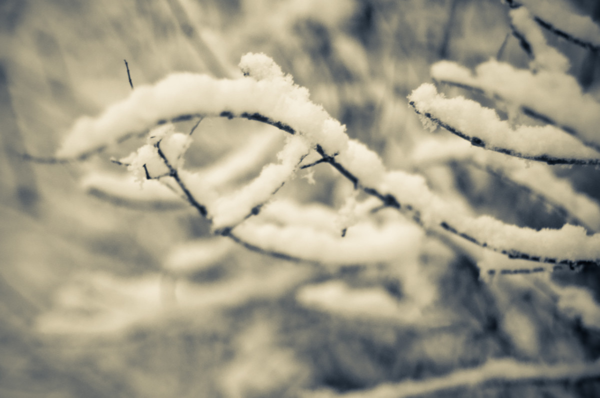 What are the best things about winter?