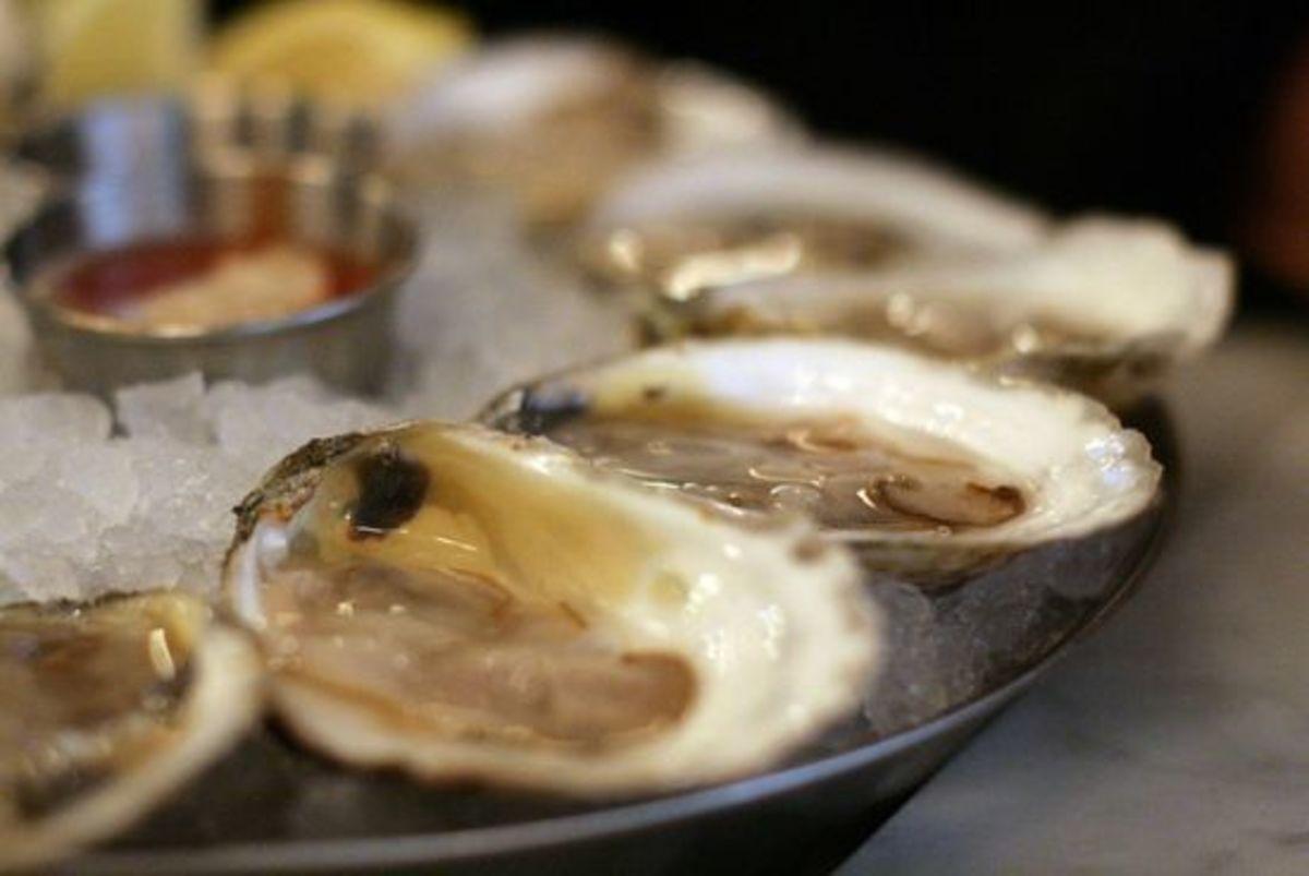 oysters-ccflcr-julesjulesjules-m1