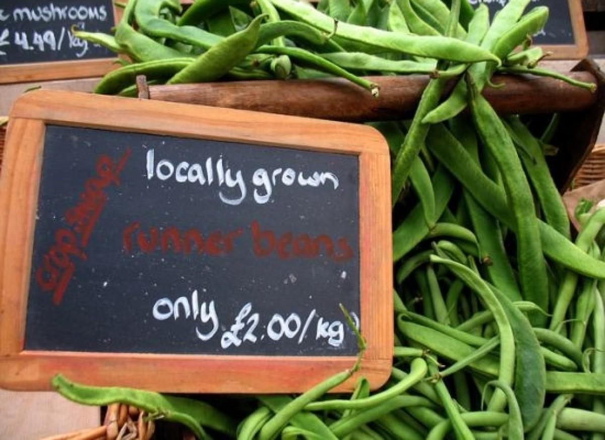 Downtown Farmers Market 10