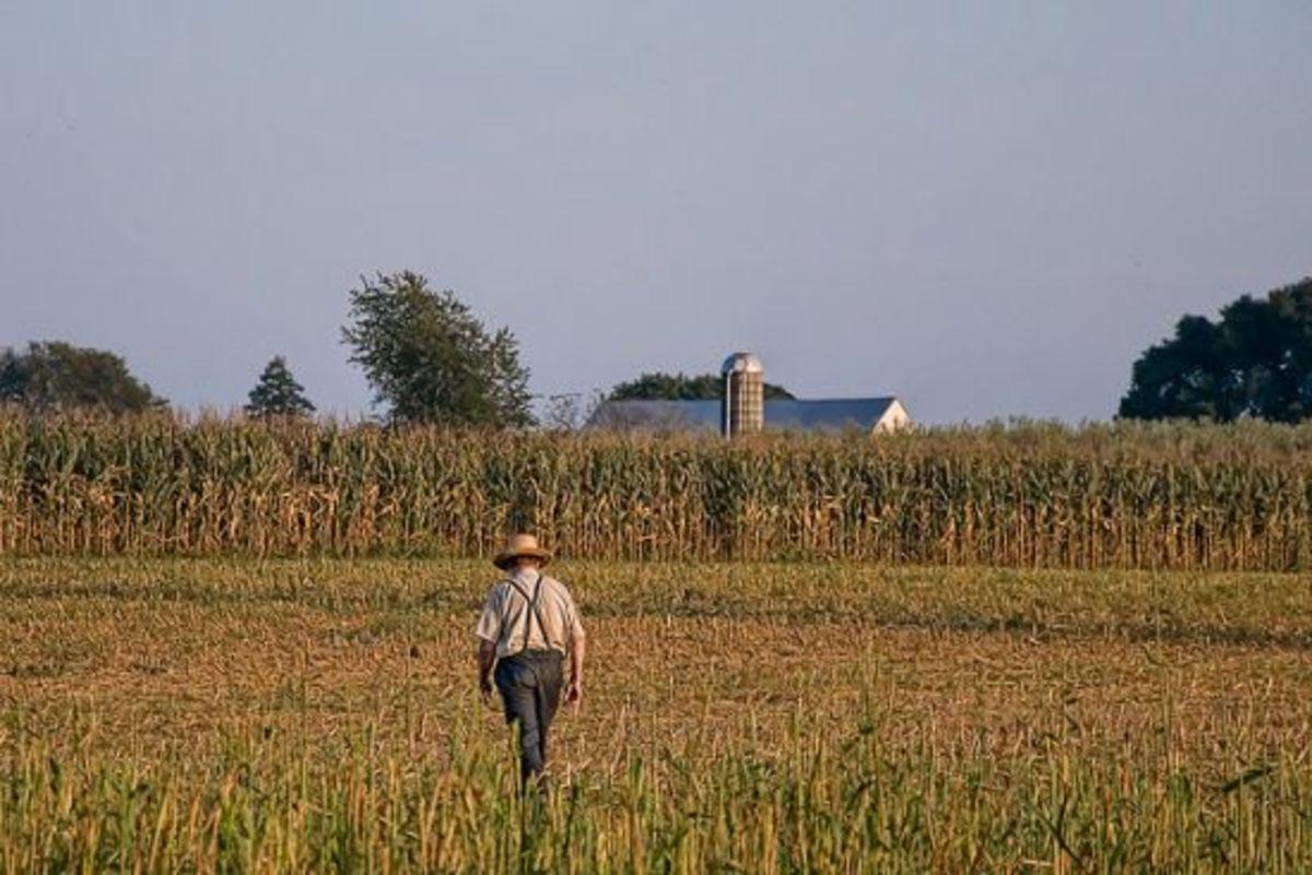 farmer-ccflcr-bobjagendorf