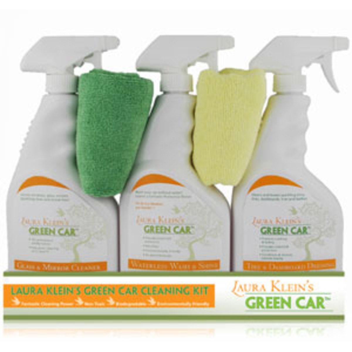 Laura Kleins Green Car Cleaning Kit