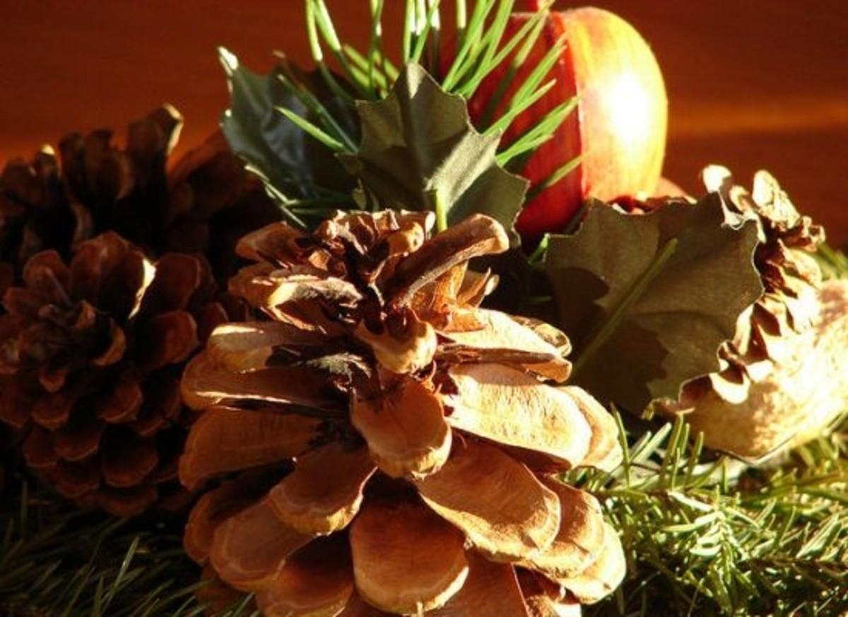 pinecone-centerpiece-ccflcr-bobtravis