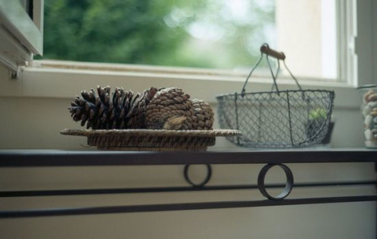 pinecone-plate-ccflcr-Anne-S-Lucas