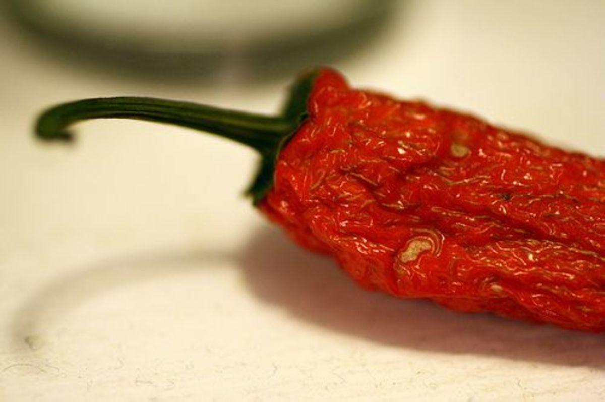 goaliej54_pepper