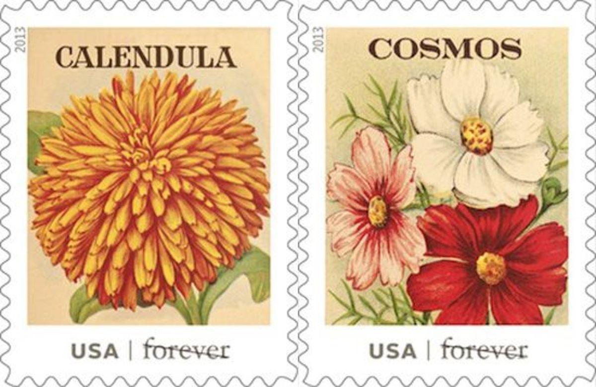 calendula-cosmos-stamps