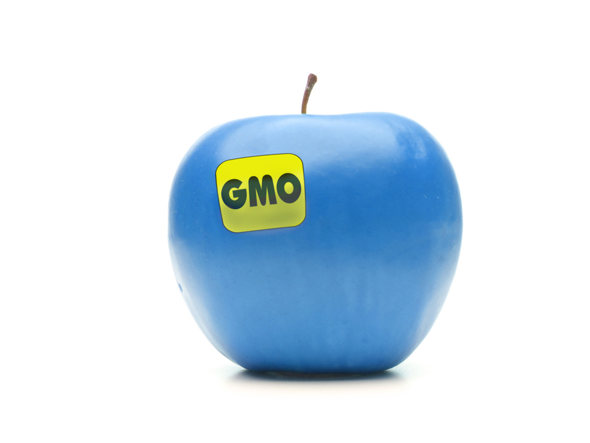 In Lieu of Labels, White House Moves to Update Regulatory Framework for GMOs
