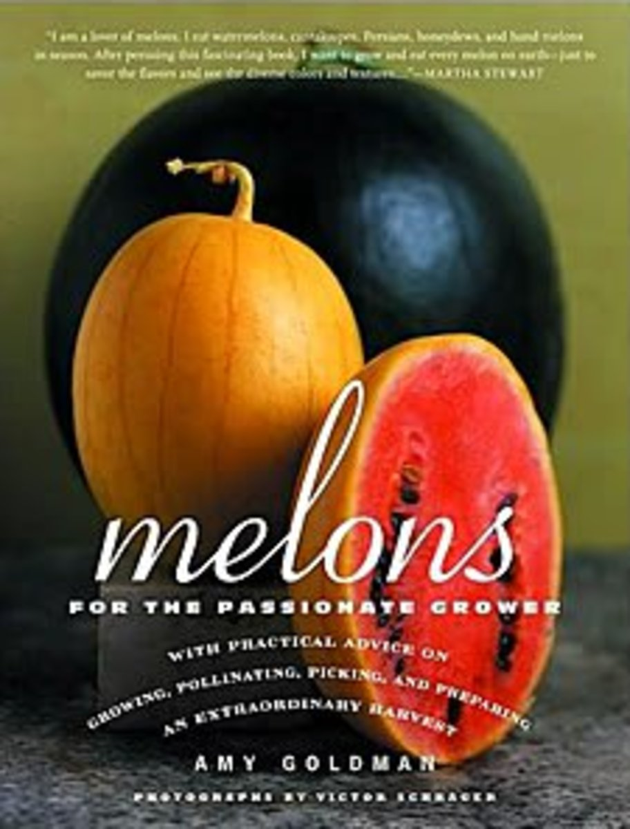 Grow Your Own Melons
