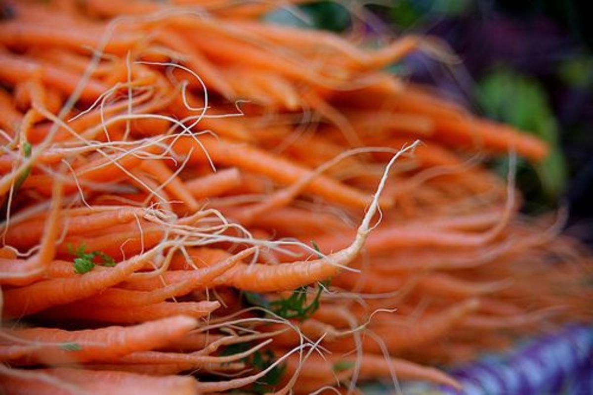 carrots-ccflcr-RobertD