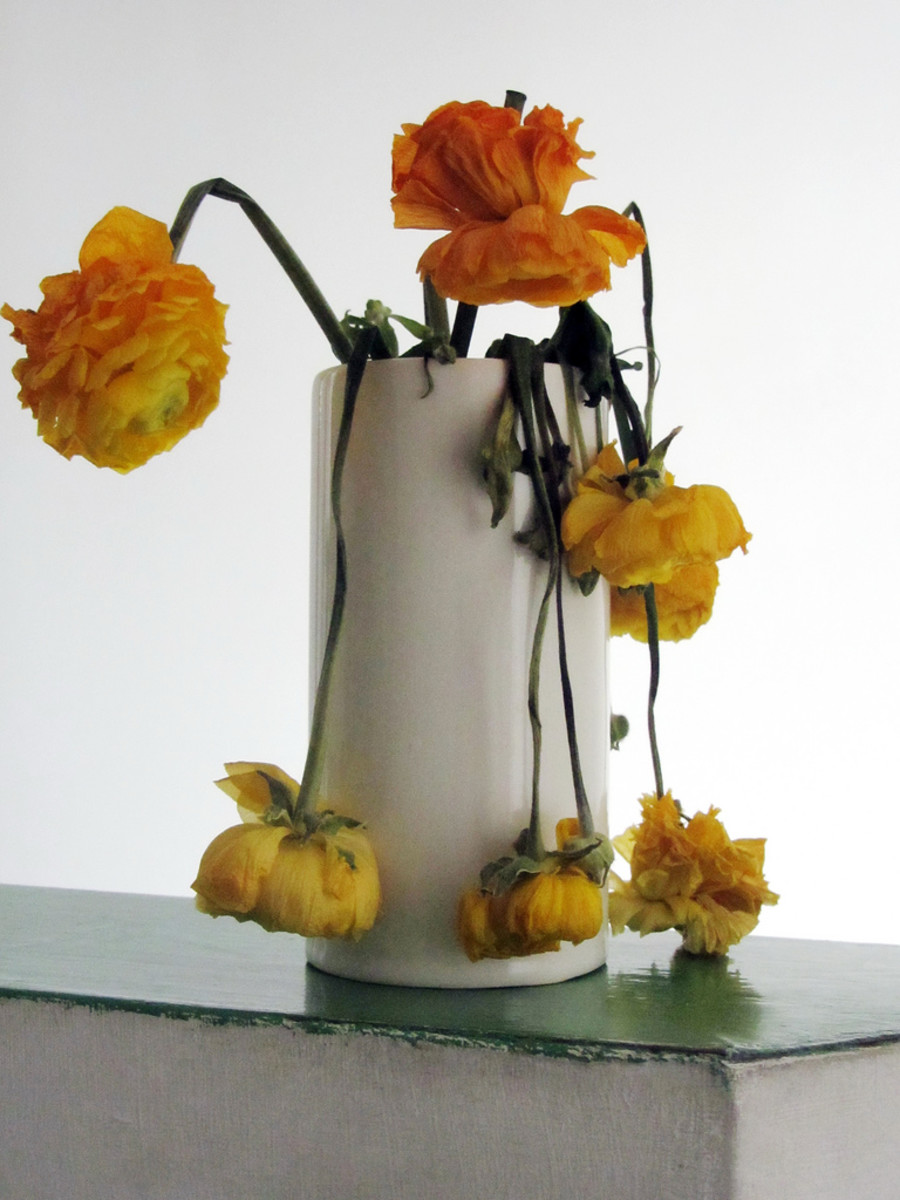 10 Fun Ways to Repurpose a Bouquet of Almost Dead Flowers ...