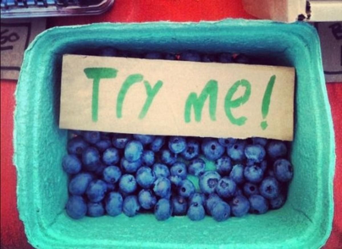 blueberries-ccflcr-hanspetermeyer