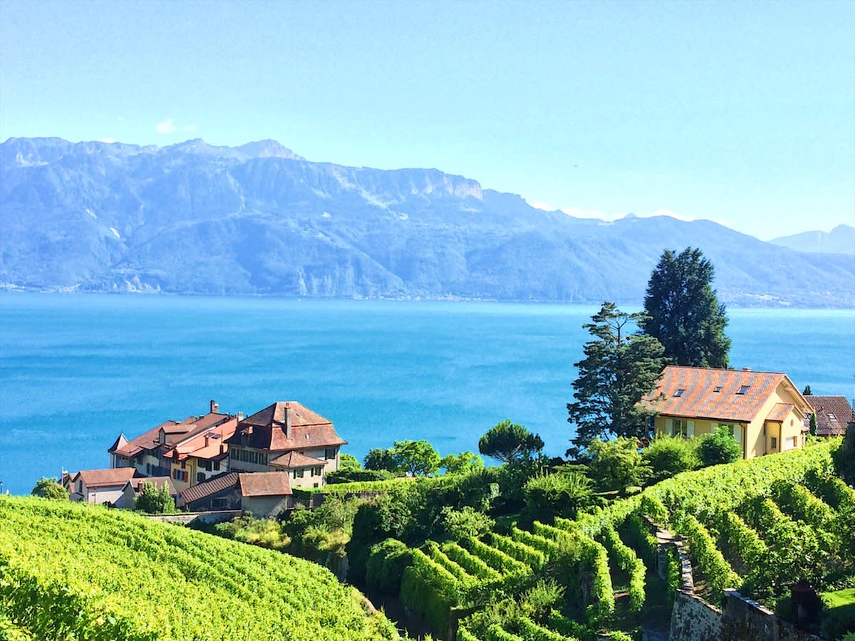 Swiss wine country in Lavaux
