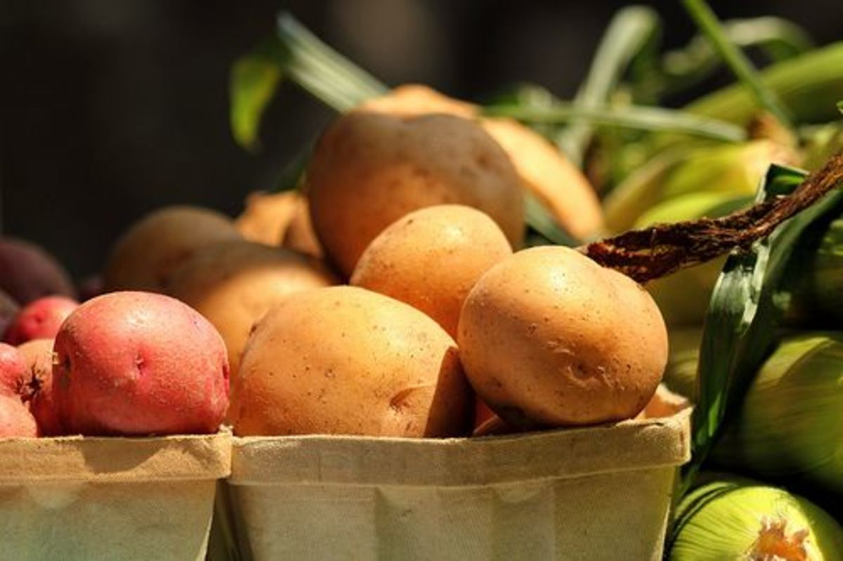 potatoes-ccflcr-mr-t-dc