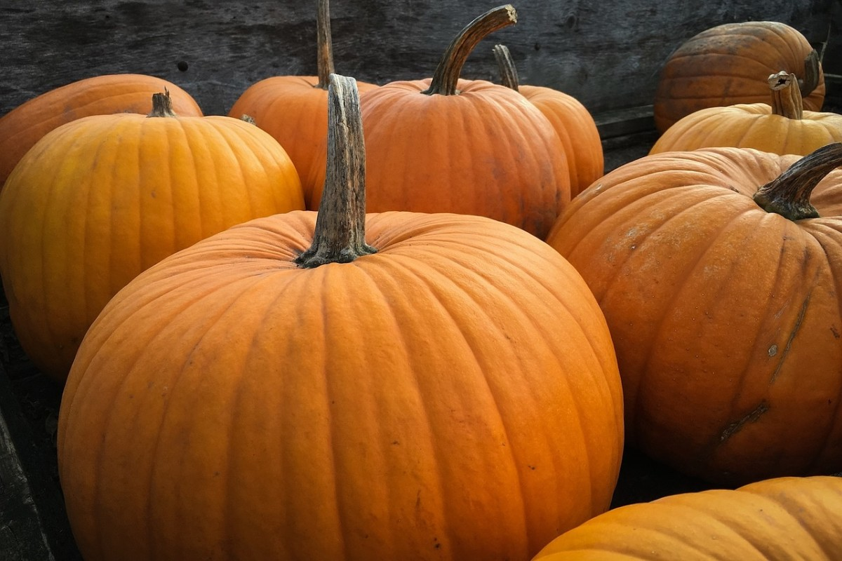 3 DIY Pumpkin Beauty Recipes for Glowing Skin and Hair