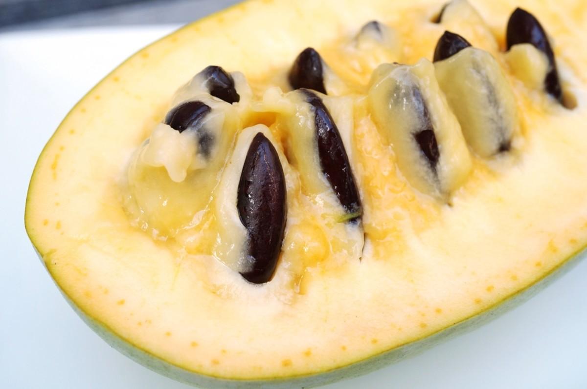 Pawpaw fruit cut open.