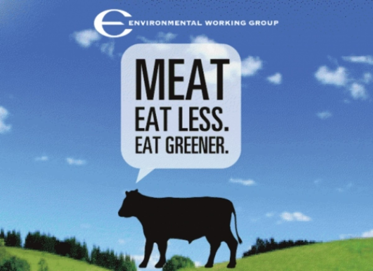 EWG meat guide