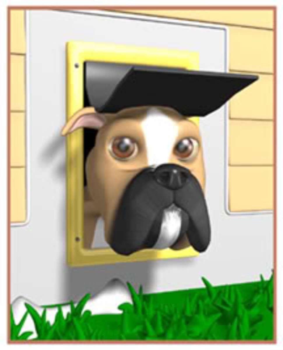 doggiedoor1
